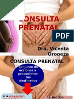 consultaprenataldra-130729163750-phpapp02.pptx
