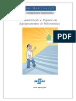 Manutencao e Reparo em Equipamento de Informatica.pdf