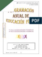 PROGRAMACION E.F.- SAN JUAN DE RIBERA -2005-2006.pdf