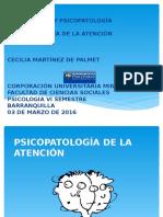 Psicopatologia de La Atención