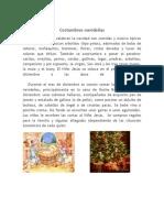 Costumbres navideñas.docx