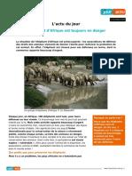 Elephant Dafrique en Danger 93138