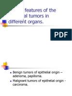 Epithelial Tumors