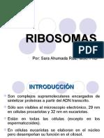 RIBOSOMAS