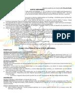 Aorta Abdominal.pdf