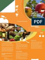 Leaflet Food Ro
