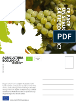 Productcards Grapes Ro
