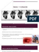 138596682-Exposicion-vasos-sanguineos.pptx