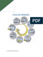 revista con detalles tecnicos barios.docx