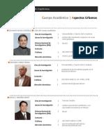 2 Investigadores Web CA Aspectos Urbanos 2015