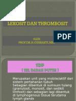 Fungsitrombosit&Clotting.ppt