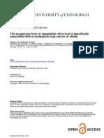 OPA-gag PCR