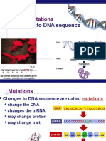 Overview Mutation Polymorphism