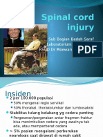 Spinal cord injury (2).pptx