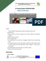 Acizi.pdf