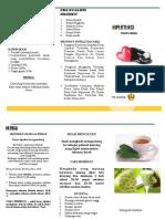 Leaflet Herbal