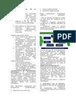 Resumen finanzas internacionales