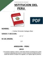 Constitucion Del Peru (Civica)