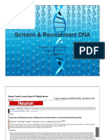 Screens+and+Recombinant+DNA+slides