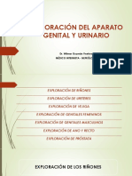 EXPLORACION_DEL_APARATO_GENITAL_Y_URINAR.pdf
