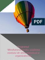 Mindfulness Pentru Scaderea Nivelului de Stres Individual Si Organizational