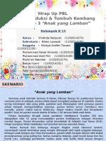 B 15 - PBL Reproduksi Sk 3 Anak yang Lamban