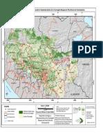 Cobertura forestal potencial y actual Ecorregión Pino y Encino.pdf