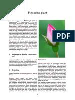 Flowering Plant (Angiosperms)