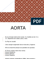patologias aorta