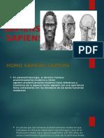 Sapiens(Tobon)