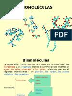 Biomoléculas 2016 Segundo Semestre