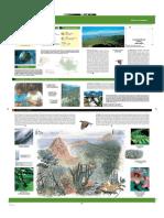 garjonay-folleto-español.pdf