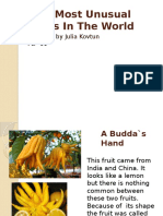 The Most Unusual Fruits in the World. Julia Kovtun PD- 11