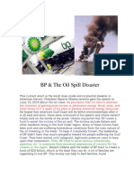 BP and the Oil Spill