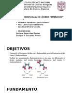 Seminario Síntesis a Micro-escala de Ácido Fumárcico