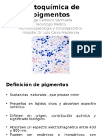 8 - Histoquímica de Pigmentos 2012