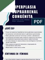 hiperplasia suprarrenal congenita