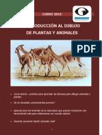 2193-03 - Dibujo de Plantas y Animales