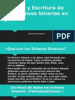 Lectura y Escritura de Los Archivos Binarios En