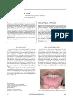 Temario-Odontología.pdf
