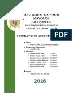 informefisica7-FINALito