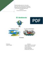 El Ambiente Informe