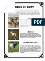 Breeds of Goat