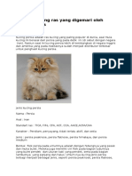 35 Jenis Kucing Ras Yang Digemari Oleh Kucing