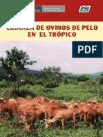 Crianza de Ovinos de Pelo en El Trópico