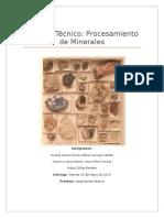 Informe Técnico, Identificación de Muestras