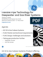 Flexible Pipe Technology for Deepwater and Gas Riser Systems