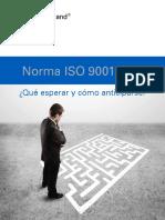 QUE ESPERAR DE LA ISO 2015.pdf
