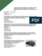 Dermatología 4