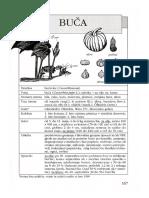 POZABLJENE_POLJŠČINE_buce.pdf